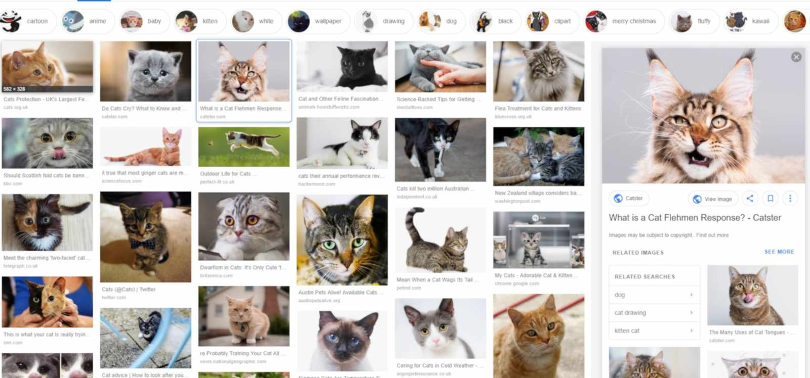 Google Images Gets New Image Preview Design